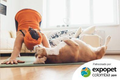 Aprende a disfrutar de doga en Expopet: una terapia de meditación y relajación para los perros