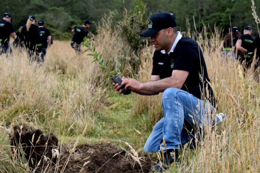 1.000 árboles que se suman a la iniciativa act4amazonia