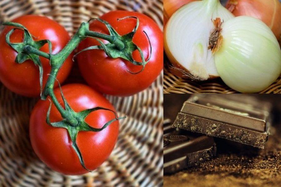 Alimentos que no debemos guardar en la nevera: consejos para una vida saludable