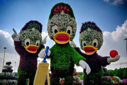 Así es el jardín de flores más grande del mundo, ¡cosas que solo pasan en Dubai!