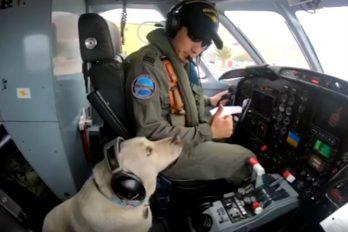 Valentina Gan, la perrita abandonada en una bolsa y que ahora es oficial de aviación