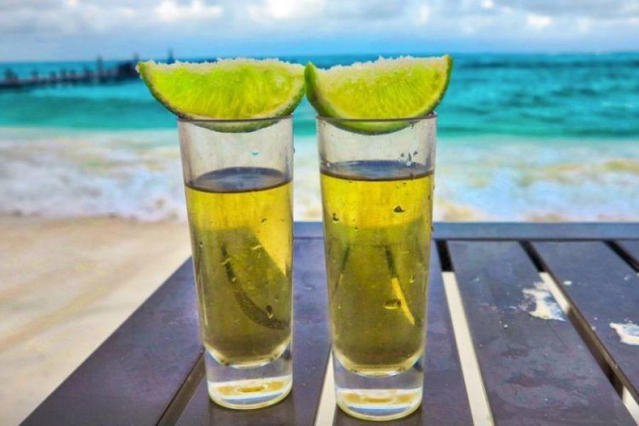 El poder del tequila: cinco beneficios científicos que ofrece este licor