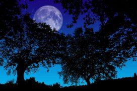 La extraordinaria 'Luna fría' cumplió y nos dio la noche más larga del año