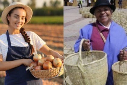 Los canastos son importantes para los colombianos y para el planeta: 7 razones que lo confirman