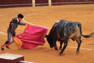 El municipio colombiano que le dijo no más a las corridas de toros ¡Gran iniciativa!