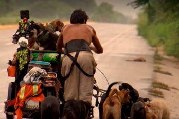 El hombre que dio la vuelta a su país rescatando perros de las carreteras, ¡siempre caminando!