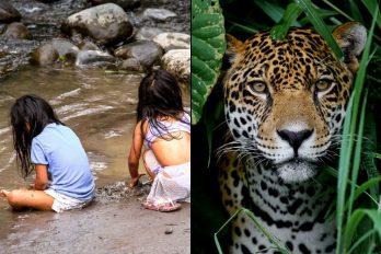 Madre sobrevivió a la selva con sus hijos y no para de sufrir, ¡necesita de la ayuda de todos!