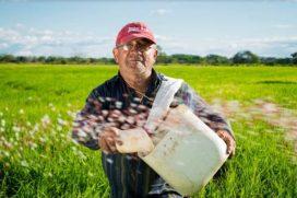 No vayan al campo: campesinos envían petición urgente por coronavirus