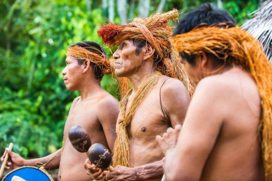 Amenaza de extinción de sabiduría ancestral indígena de Amazonas por COVID-19