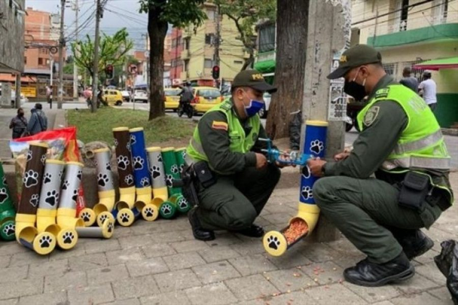 Con tubos, Policía fabrica dispensadores de comida para perros y gatos abandonados