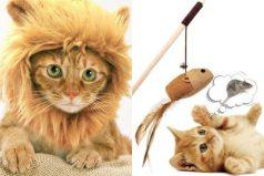 12 productos para gatos que debes tener si los amas