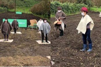 Donan más de media tonelada de semillas y bultos de abono a campesinos de Boyacá