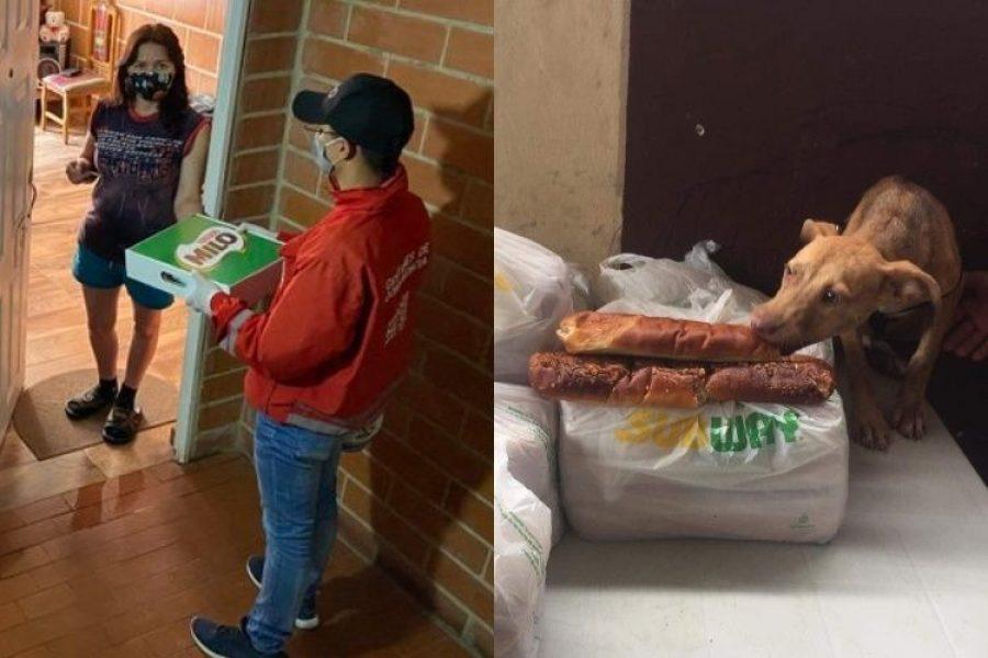 Milo para familias y pan para perros callejeros durante COVID-19 generaron descontento