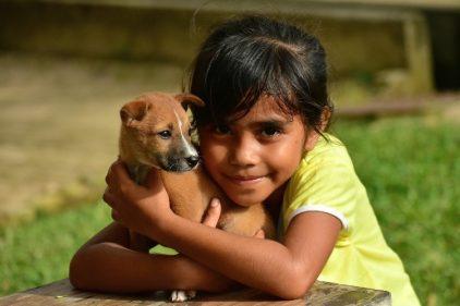 Ofrecen trabajo para abrazar y consentir perros ¡Hace falta personal!