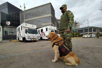 Colombia recibe 6 ambulancias para perros del Ejército que trabajan en desminado