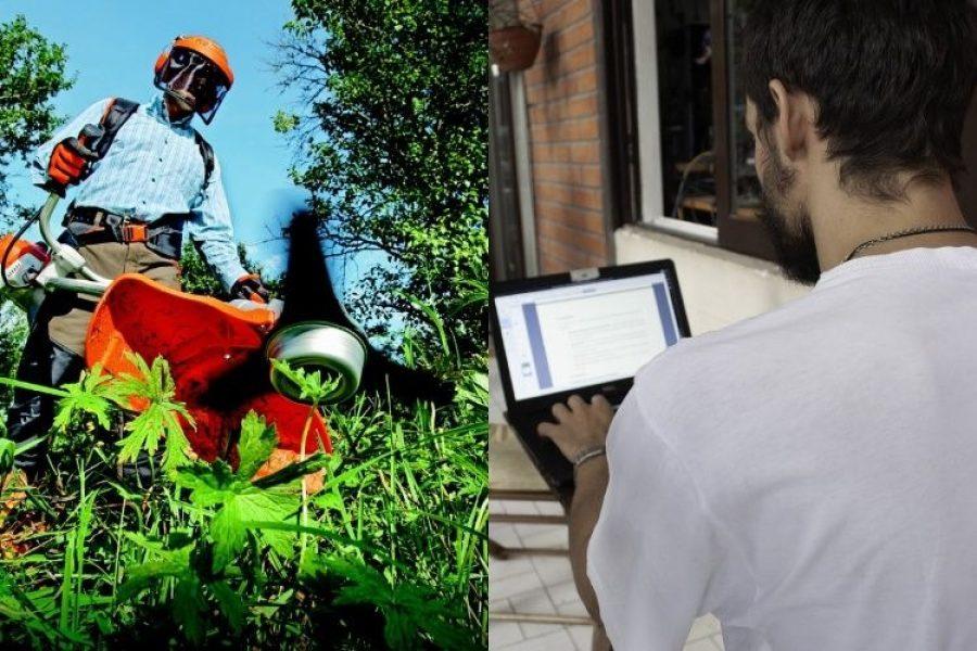 Colombianos crean espacio para que trabajadores independientes consigan trabajo