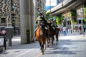Presentan petición para que la Policía no use caballos en el control de manifestaciones