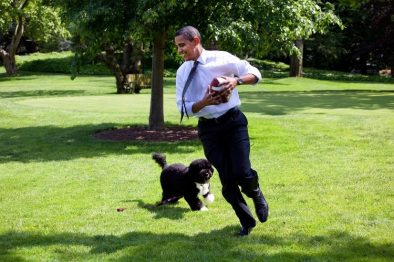 La presencia de un perro en casa ayuda a mantener un corazón sano, revela un estudio