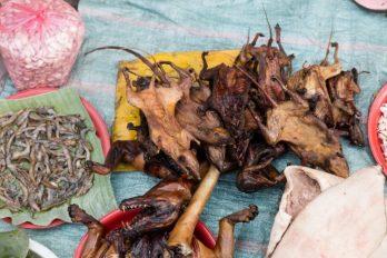 Las ratas asadas salvan a varias personas durante la pandemia