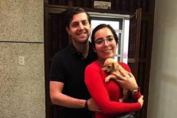 Adoptaban perros cachorros para alimentar serpientes, después la pareja desaparecía