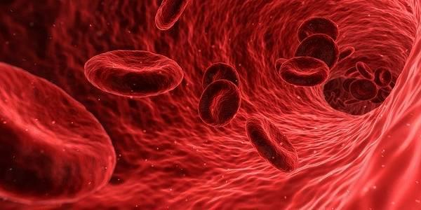 ¿Qué tipo de sangre tienes? podrías estar entre los más inmunes al coronavirus