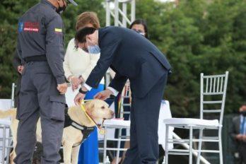 Condecoran y jubilan a 15 perros que combatían la delincuencia, ¡Gracias!