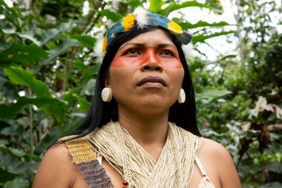 "Indígena ganó ""nobel ambiental"" por salvar 202 mil hectáreas de selva de una petrolera"