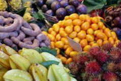 Conozca cuáles son las frutas exóticas que produce Colombia para el mundo