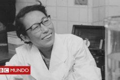 ¿Por qué un fármaco creado por una científica japonesa hace 50 años puede ahora salvar la vida de miles de mujeres en todo el mundo?
