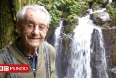 La increíble historia de Antonio Vicente, el hombre al que tildaban de loco y que plantó su propia selva