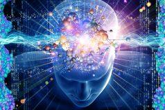 Así predice el futuro nuestro cerebro. ¡Impresionante!