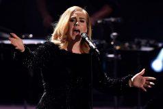 Adele detiene un concierto al ser atacada por un grupo de mosquitos