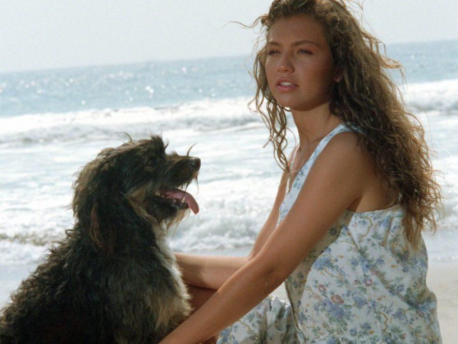 ¿Recuerdas a 'Pulgoso', el perro de Marimar? Esto es lo que hace ahora la famosa mascota que hablaba